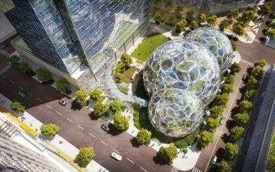 Los increíbles domos geodésicos llenos de plantas de Amazon en Seattle