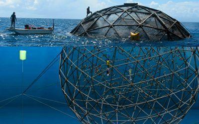 Domos Geodésicos piscifactorias. Acuicultura en un mundo sostenible.