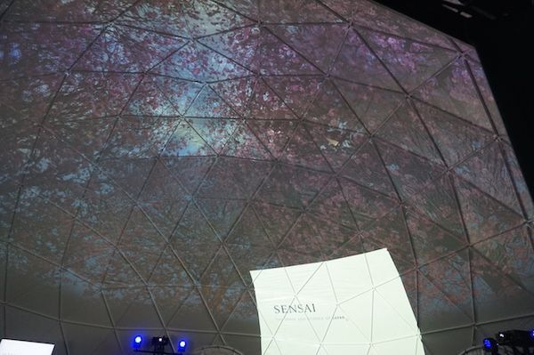 domo geodesico sensai